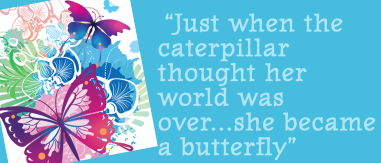 butterfly-quote