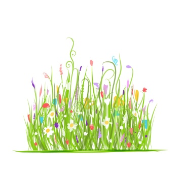 Green meadow for your design